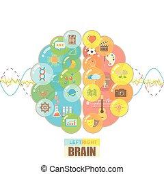 Left and right brain bubbles concept