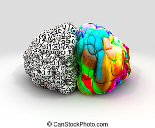 Left And Right Brain Concept Front - A typical brain with...