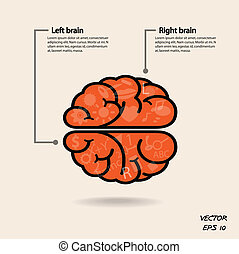 left brain and right brain symbol, creativity sign, business...