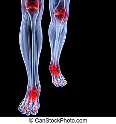 leg - Human feet under X-rays. joints are shown in red....