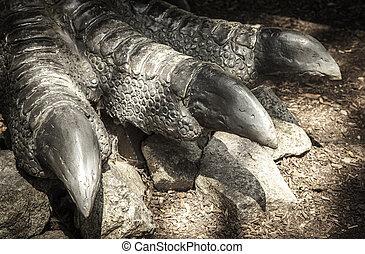 Leg of dinosaur Allosaurus