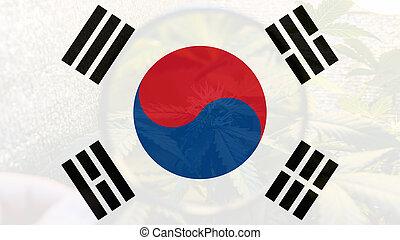 legalization, 医学, 韓国, マリファナ, 南