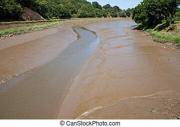 legamoso, fondo, y, banco, de, superficial, río