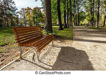 lege, houten bank, in park, laan