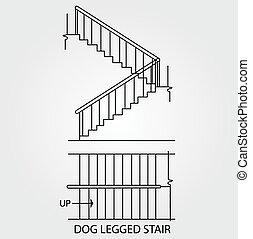 legged, cão, escadaria
