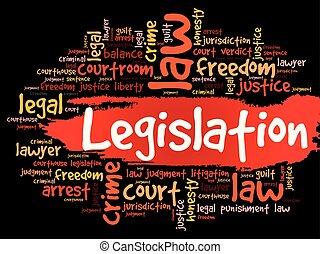 Legislation word cloud concept - Legislation word cloud...