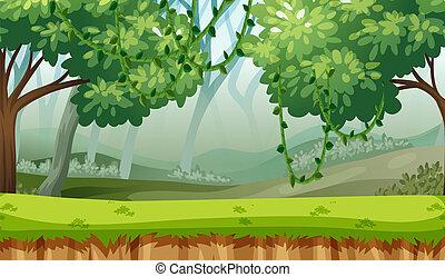legnhe, paesaggio verde, fondo