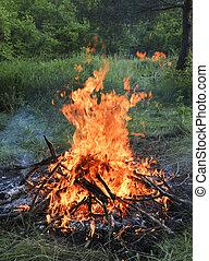legno, accampamento estate, forest., fuoco