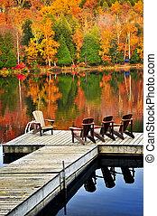 legno, bacino, su, autunno, lago