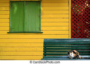 legno, blu, calicò, parete, fronte, gatto, colorito, casa, esterno, panca, scuro