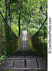 legno, camminare, ponte