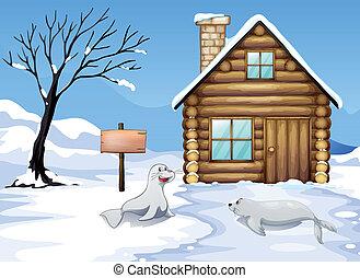legno, cartello, neve