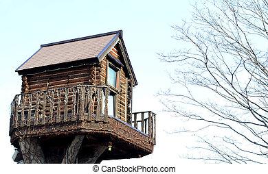 legno, casa albero
