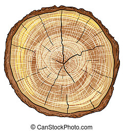 legno, ceppo