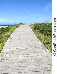 legno, condurre, spiaggia, percorso