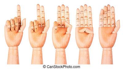 legno, conteggio, (1, 5), mani