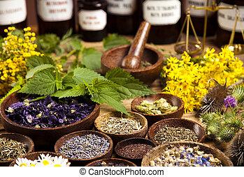 legno, erbe, fresco, medicinale, scrivania