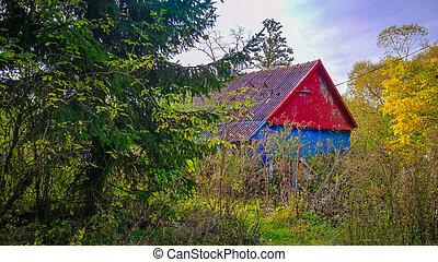 legno, legnhe, cabina, colorito