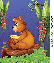 legno, orso, seduta