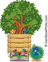legno, pavone, sagoma, segno