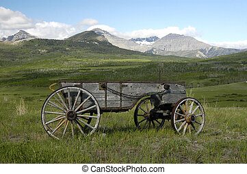 legno, pionieri, carro