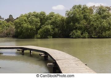 legno, ponti