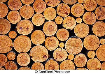 legno, registrare, fondo