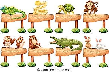 legno, selvatico, differente, animali, segno