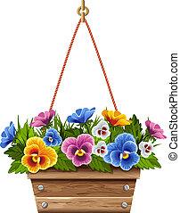 legno, vaso, fiore, viole pensiero