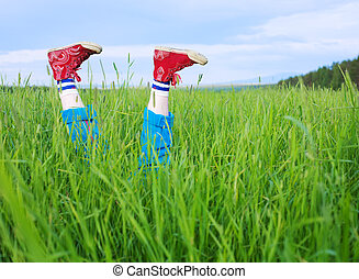 Legs, in a green grass