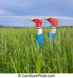 Legs, in a green grass