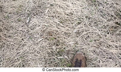 legs in trekking boots walking on withered grass, above view...