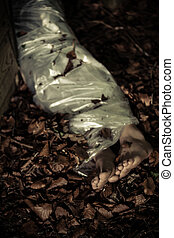 Legs of a discarded corpse in leafy detritus in woodland ...