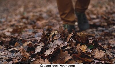 Legs of a man who walks through the autumn forest and kicks...