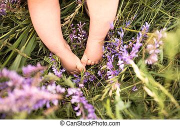 Legs of little baby boy against green meadow with purple...