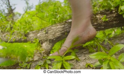 Legs of young woman walking on a tree branch. - Close up of...