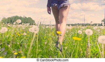 Legs of young woman walking throught the meadow