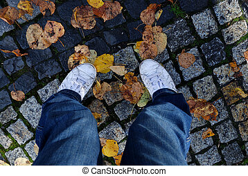 legs on old cobblestone