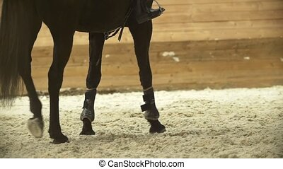 Legs the black horse galloping at show jumping competition,...