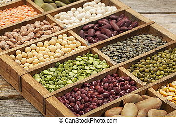 legume abstract - assorted legumes: green, red and French...