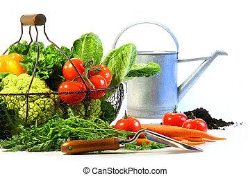 legumes frescos, com, lata molhando