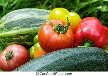 legumes, ligado, a, grama verde, fundo