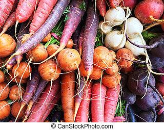 legumes, raiz, coloridos