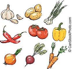 legumes, vetorial, set., ilustração