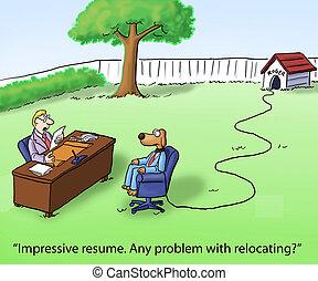 lehet, relocation, kutya, bír, interjú, probléma