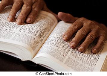 leitura, bíblia