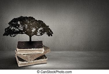 leitura, e, próprio, educação