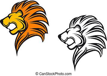 lejon, huvud