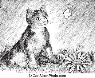 lekfull, kalikå, kattunge