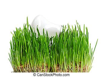 lekki, energia, symbolizing, zielony, bulwa, trawa